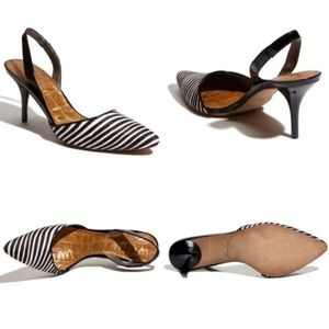 SAM EDELMAN Zebra Animal Print Pointy Slingback
